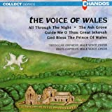 echange, troc  - Voice Of Wales
