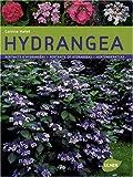 echange, troc Corinne Mallet - Hydrangéa : Portraits d'hydrangéas, édition français-anglais-allemand