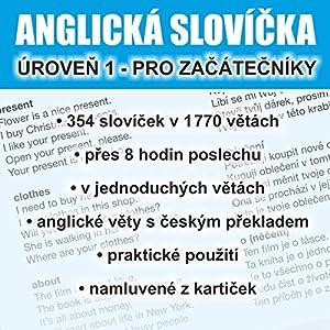 Anglická slovícka - úroven 1 pro zacátecníky Hörbuch