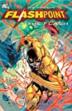 img - for Flashpoint World Of Flashpoint The Flash TP (Flash (DC Comics)) book / textbook / text book