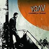 Yoav Charmed & Strange