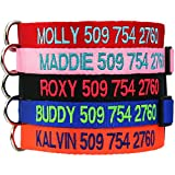Custom Embroidered Dog Collar - Includes Personalized Pet Tag for Added Safety and Pet ID