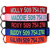by DogCollars  (360)  Buy new:   $16.95