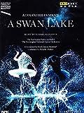 A Swan Lake (Ein Schwanensee) (Oslo Opera House, 2014) [DVD]
