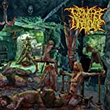The Patterns Of Depravity [Explicit]