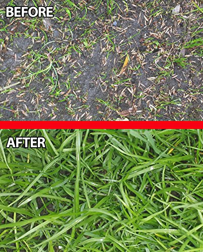 hard-wearing-grass-seed-and-feed-premium-grass-seed-fertiliser-fast-growing-tough-uk-tailored-for-lu