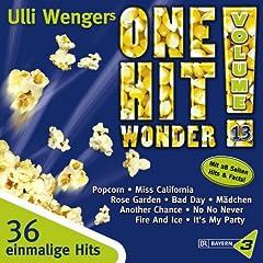 Ulli Wengers One Hit Wonder, Vol. 13 (Bayern3)