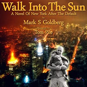 Walk into the Sun: A Novel of New York After the Default | [Mark S. Goldberg]