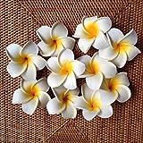 バリ島産 スポンジプルメリア L 白 10個セット バリ雑貨 南国インテリア ハワイインテリア