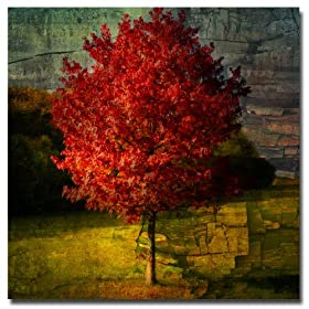 Trademark Art Philippe Sainte Laudy Autumn Red Canvas Art