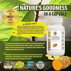 Turmeric Curcumin & Bioperine Capsules Pure Dietary Supplement Joint and Muscle Pain All Natural High Potency & Full Absorption 95% Curcuminoids 60 Capsules 500 mg Turmeric Supplement 1 Cap Per Day