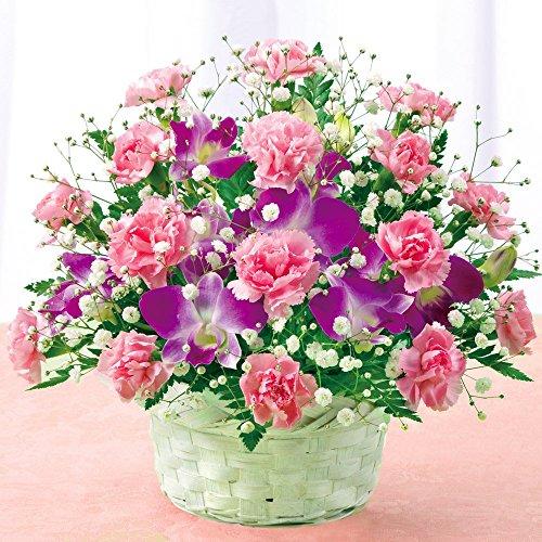 花キューピット スイート 母の日ギフト mt01yr-521203 (2016年5月6日・5月7日・5月8日のいずれかに到着)