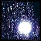 Luminous Night [VINYL]