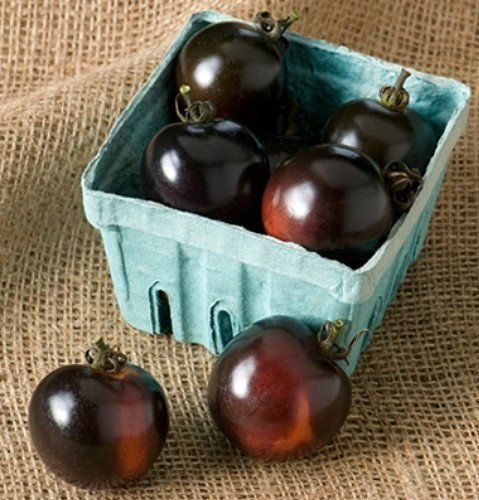 Indigo Rose Tomato - 20 Seeds - The Darkest Tomato in the World by Hirts: Seed; Tomato (Indigo Tomatoes compare prices)