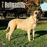 Bullmastiffs 2015 Calendar