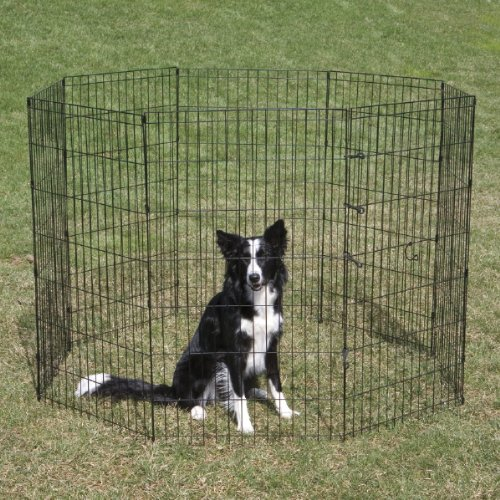 Best Wire Dog Crate front-1077399