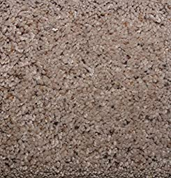 3\'x10\' Coastal Living Sandpiper 60 oz Indoor Cut Pile Area Rug | Coastal Living Sandpiper 60 oz 3/4"|245|256|?|f230f51c13137623dfd0fc7188263e2c|False|UNLIKELY|0.3014543354511261