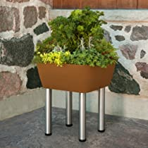 Square Elevated Garden365 Container