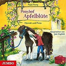 Hannah und Pinto (Ponyhof Apfelblüte 4) (       gekürzt) von Pippa Young Gesprochen von: Jule Hupfeld