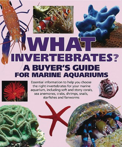 What Invertebrates?: A Buyer's Guide for Marine Aquariums