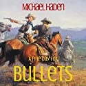 A Fine Day for Bullets: The Country Western Cowboy Series, Book 1 Audiobook by Michael Haden Narrated by Cynthia Hemminger