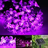 LE® 23ft LED Solar Fairy Lights - Waterproof - 50 LEDs - 1.2 V - Violet - Portable - with Light Sensor - Outdoor Blossom String Lights - Ideal for Christmas - Wedding - Party
