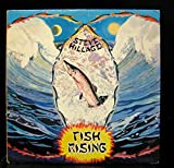 Steve Hillage - Fish Rising - Lp Vinyl Record