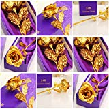 Everyday Desire Great Valentine's Gift 24K Gold Rose With Gift Box And Carry Bag - Best Gift For Loved Ones, Valentine's Day, Mother's Day, Anniversary,Birthday's, Lover's Flower Gold Dipped Rose With Gift Box For Women Girls Gifts
