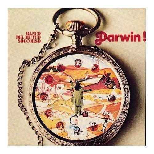 darwin-lp-miniature-import