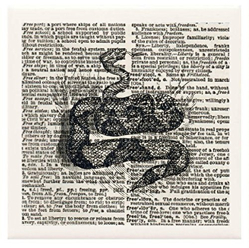 """Hand Made Coasters [Set Of 4] - Bees, Butterflies & Insects """"Partially Coiled Snake"""" Artwork Combines With Vintage Dictionary Pages, Ceramic Tiles And Specialty Materials To Create These Coasters From Our Design Collection - A Stylish And Chic Way To Add front-464557"""
