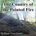 The Country of the Pointed Firs Audiobook by Sarah Orne Jewett Narrated by Cindy Hardin Killavey