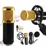 Mchoice Condenser Pro Audio BM800 Microphone Sound Studio Dynamic Mic +Shock Mount (Black) (Color: Black, Tamaño: Cable length: 3m)