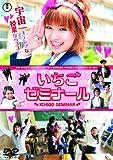 南明奈 DVD いちごゼミナール」
