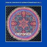 Odyss�e - �veil de conscience et gu�rison �nerg�tique, Vol. 1par Christophe Martin de...