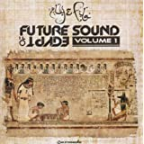 Future Sound of Egyptpar Aly & Fila
