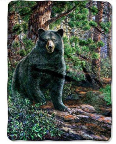 "Black Bear Oversized 60"" X 80"" Royal Plush Raschel Throw front-495969"