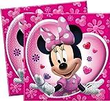 Minnie Mouse Parti