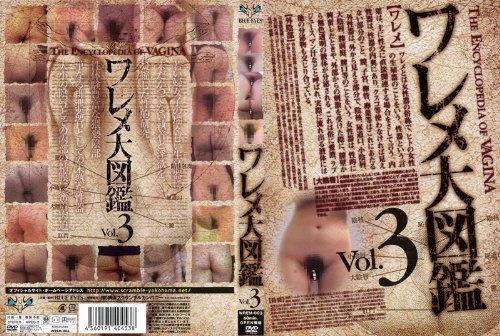[素人の皆様] ワレメ大図鑑 Vol.3 WREM-003