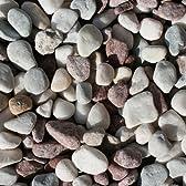 大量購入特別商品♪玉砂利(五色石)【大】25mm 20袋セットです♪