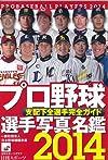 プロ野球選手写真名鑑 2014年 (NIKKAN SPORTS GRAPH)