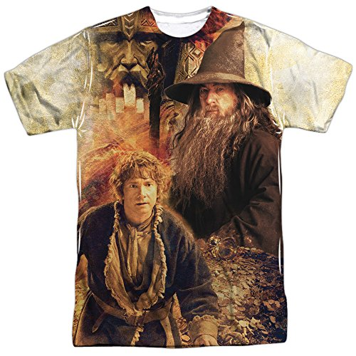 The Hobbit Desolation Of Smaug Bilbo And Gandalf Movie Adult T-Shirt Tee