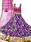 Sanjana Women's Net & Crop Unstitch embroidered designer Dress Material (SC9474_Free Size_Pink)