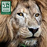 img - for National Wildlife Federation 2016 Wall Calendar book / textbook / text book