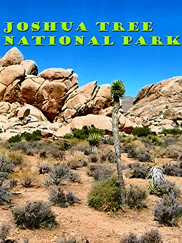 Clip: Joshua Tree National Park on Amazon Prime Instant Video UK