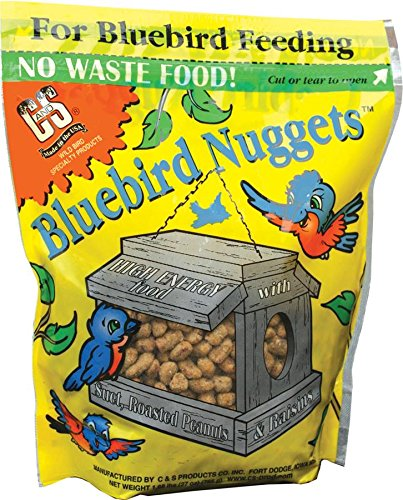 cs-bluebird-nuggets