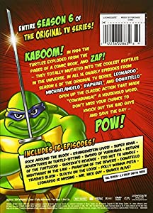 Teenage Mutant Ninja Turtles: Season 6 [DVD] [Region 1] [US Import] [NTSC]