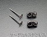 サージカル・ロジューム 皿付ピアス金具 1ペア キャッチ付