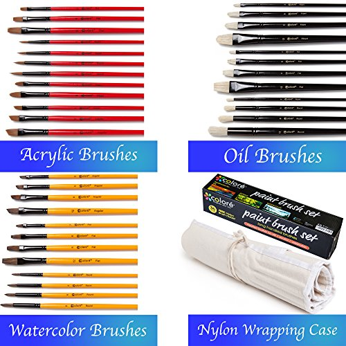 colore-art-paint-brushes-with-nylon-wrapping-case-complete-pack-of-36-professional-grade-paint-brush