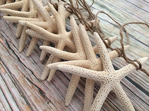 13ft-Starfish-Christmas-Garland
