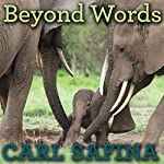 Beyond Words: What Animals Think and Feel | Carl Safina